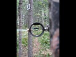 Le point de vue de l'archer